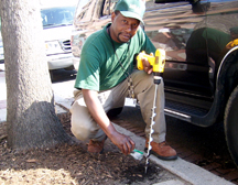 DC Greenworks Student in action Courtesy: DC Greenworks