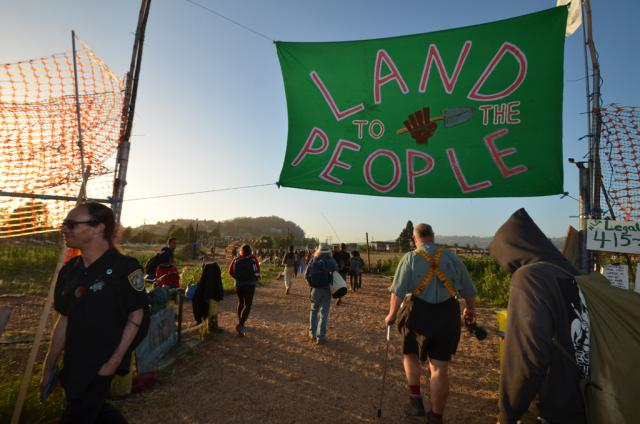 Occupying the Farm, The Gill Tract. Albany, California. Photo 1 cc. 2012 occupyoakland.org
