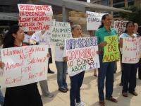 East Austin Residents Rally Against Relocation of Animal Shelter